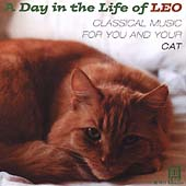 A Day in the Life of Leo - Music for You and Your Cat