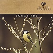 Brian Hardin: Songbirds