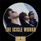 Icicle Works: 5 Albums [Box] *