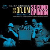 Peter Erskine: Second Opinion
