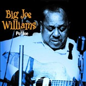 Big Joe Williams: Po' Jo