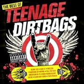 Various Artists: The Best of Teenage Dirtbags