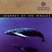 David Arkenstone: Journey of the Whales