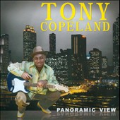 Tony Copeland: Panoramic View