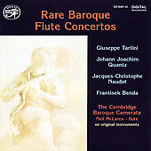 Rare Baroque Flute Concertos / Neil McLaren