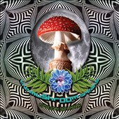 Various Artists: The Mushroom Speaks