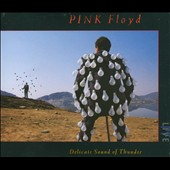 Pink Floyd: Delicate Sound of Thunder [Box]