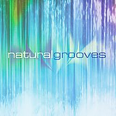 Dan Gibson: Natural Grooves