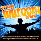 Various Artists: We Love Bigroom Dance