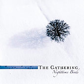 The Gathering: Nighttime Birds