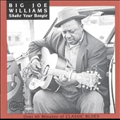 Big Joe Williams: Shake Your Boogie
