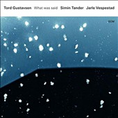 Simin Tander/Tord Gustavsen/Jarle Vespestad: What Was Said