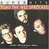 Toad the Wet Sprocket (Modern Rock): Super Hits
