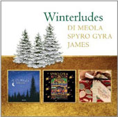 Al di Meola/Spyro Gyra/Boney James: Winterludes