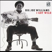 Big Joe Williams: I Got Wild