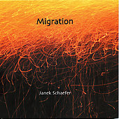 Janek Schaefer: Migration
