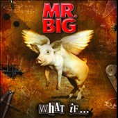 Mr. Big: What If... *