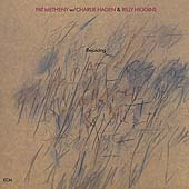 Pat Metheny: Rejoicing
