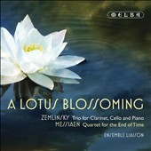 A Lotus Blossoming