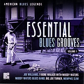 Various Artists: The Best of the Blues Singers, Vol. 1