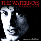 The Waterboys: In a Special Place (The Piano Demos for This Is The Sea)