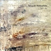 Teruyuki Nobuchika: Still Air