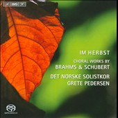 Im Herbst: Choral Works by Brahms & Schubert / Norwegian Solistkor