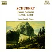 Schubert: Piano Sonatas D 784 & D 894 / Jen&ouml; Jand&oacute;