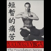 David Welek: Black Dragon Yoga: The Foundation Series