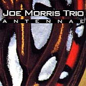 Joe Morris Trio (Guitar): Antennae