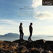 Duo Brilliante: Virtuosic Concertos for Violin & Double Bass by Bottesini, Svendsen, Wieniawski, & Borgstrøm / Arvid Engegård, violin; Knut Erik Sundquist, bass; Norwegian Radio Orch.; Hansen