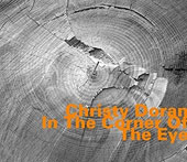 Christy Doran: In the Corner of the Eye