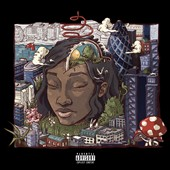 Little Simz: Stillness in Wonderland [3/24]