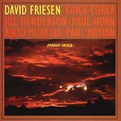 David Friesen: Amber Skies
