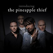 Pineapple Thief: Introducing...