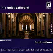 in a quiet cathedral / todd wilson