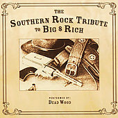 Various Artists: The Southern Rock Tribute To Big & Rich
