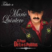 Various Artists: Tributo A Mario Quintero: El Pap&#225; De Los Pollitos