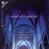 Sound of a Cathedral - Cathedral of Worms /Ensemble Officium