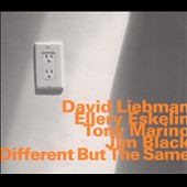 David Liebman: Different But the Same