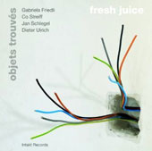 Gabriela Friedli: Objets Trouves: Fresh Juice
